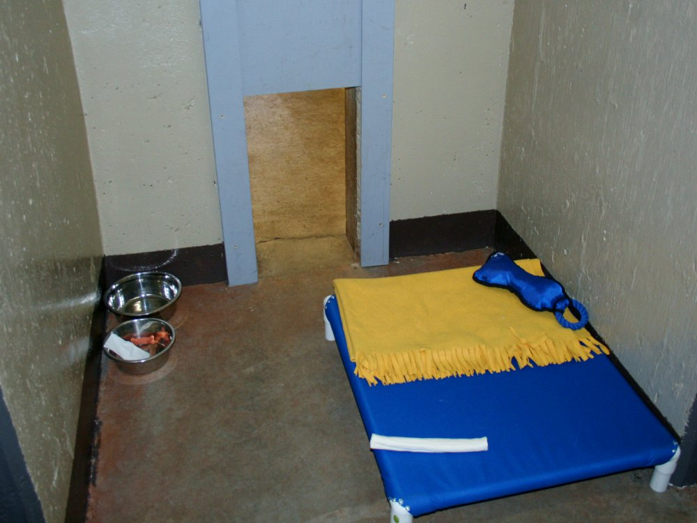 kennel_inside00.jpg